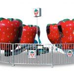 Berry Go Round-1